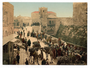 Palestine - 120 Years Ago